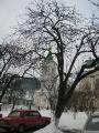kremenec_22